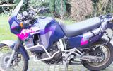 IMGP2951.jpg