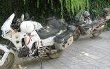 Schattiges Guesthouse-Plätzchen für die Motorräder.