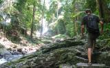 Wir stalpen durch den Urwald.
