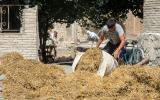 Hier wird Stroh und Lehm gelagert und anschließend im Hof zusammen mit Wasser zum Verputzen miteinander vermischt.